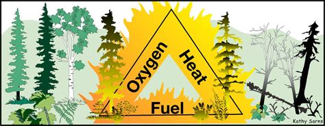 The Fire Triangle And The Fire Tetrahedron