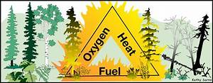 Wildfire 101  The Fire Triangle And The Fire Tetrahedron
