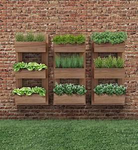 Vertical, Gardening, U2013, Page, 9