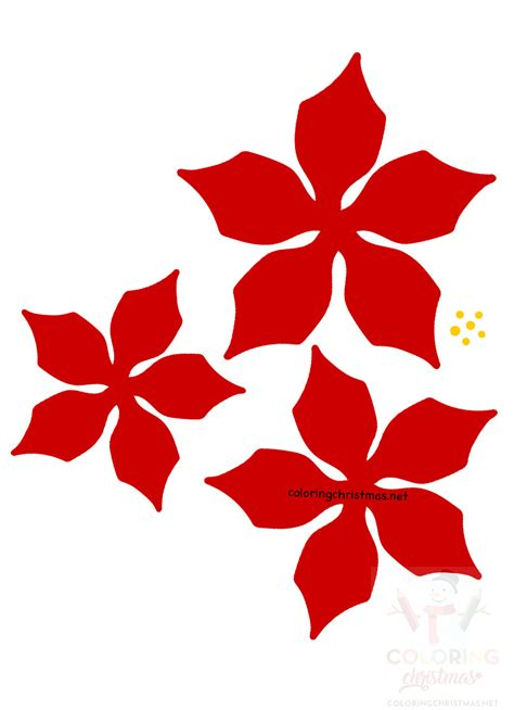 red easy paper poinsettia flowers printable coloring