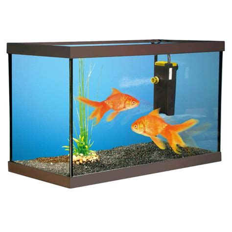 aquarium kit poissons rouges 40x20x15cm achat vente aquarium aquarium kit poissons
