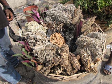 port au prince haiti herbs spice furniture