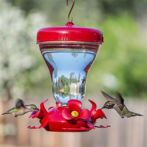 best hummingbird feeder amazon com perky pet 120tf top fill push pull 16 ounce magnolia plastic hummingbird feeder