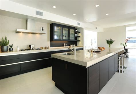 expresso kitchen cabinets palo alto penthouses modern kitchen san francisco 3631
