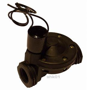 Teststreifen Für Wasser : elektroventil magnetventil f r wasser elektomagnetventil bew sserungssysteme 24v ebay ~ Whattoseeinmadrid.com Haus und Dekorationen