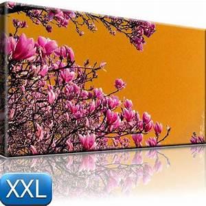 Bilder Xxl Leinwand : magnolien bild auf leinwand blumen bilder 100x55 xxl ebay ~ Frokenaadalensverden.com Haus und Dekorationen