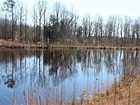 11.1 Acres-Chesterfield County, Sc : Land for Sale ...