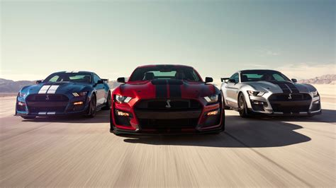 ford mustang shelby gt  shelby wallpapers hd