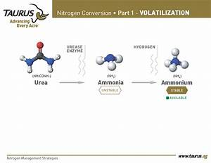 Know Your Nitrogen Cycle 2 Revised Page 3