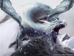 Best Dragon Painting • Fight