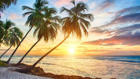 Tropical Background 3840x2160  Full Hd Wall