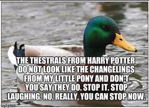 Actual Advice Mallard Meme - Imgflip