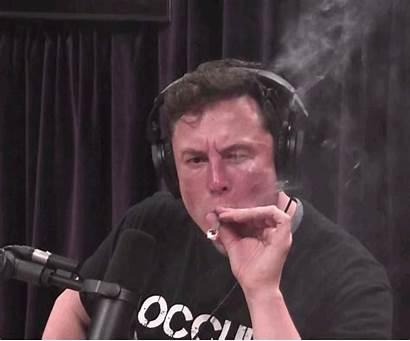 Elon Musk Rogan Joe Tesla Vox Experience