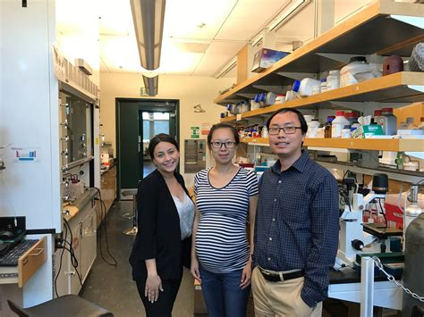 Inside UCR: Biosensors Light Up Cellular Signaling Processes