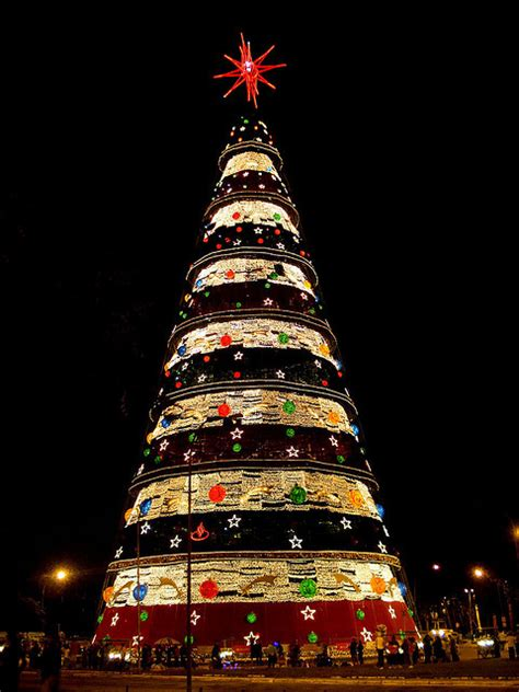 trees of lights in brazil o tree trimming traditions around the world tree city news