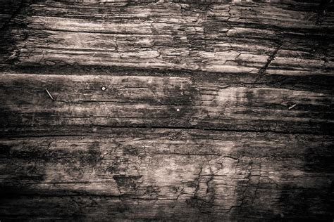 Texture Wood Monochrome · Free photo on Pixabay