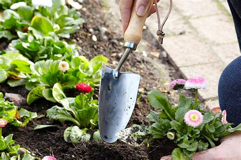 attrezzi da giardiniere strumenti da giardinaggio gli attrezzi per cominciare a