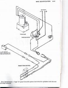 Wiring Diagram For Tilt And Trim