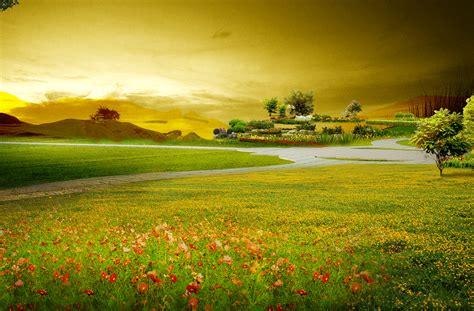 Beautiful Nature Background by Beautiful Scenery Background Flowers Grassland