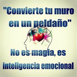 Sobre Inteligencia Emocional