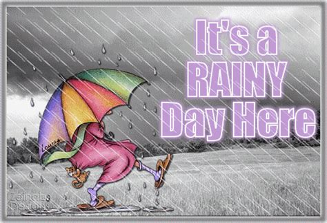 rainy day  pictures   images