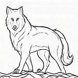 Wolf Coloring Pages Pup Printable Mother Colouring Peter Mom Drawing Theme Cub Clyde Kid Popular Coloringhome Getdrawings Library Clipart Cubs sketch template