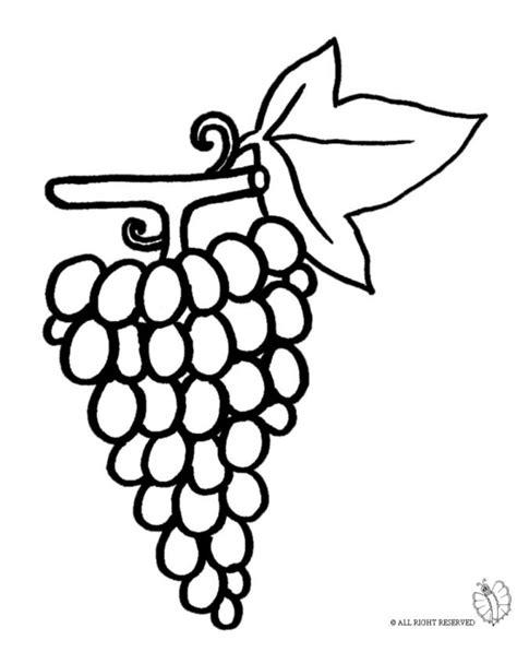 disegni di alimenti grappolo d uva da colorare disegni di alimenti da