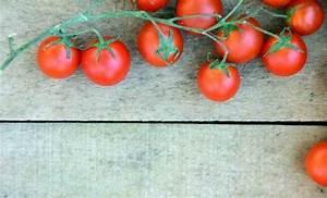 Comment Tuteurer Les Tomates : tuteurer les tomates blog promesse de fleurs ~ Melissatoandfro.com Idées de Décoration