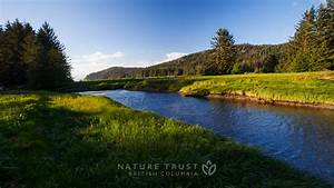 Nature Landscapes Wallpaper | The Nature Trust of British ...