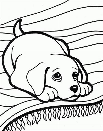 Coloring Dog Pages Puppies Puppy Colouring Dogs
