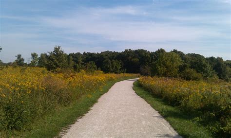 Greene Valley Forest Preserve In Naperville  Great Views