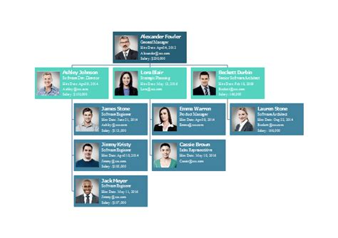 software company org chart  software company org