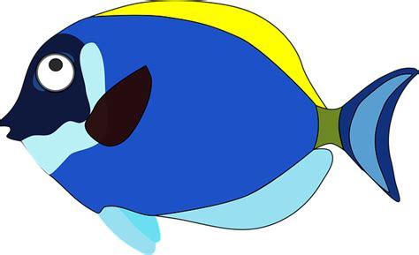 Blue Cartoon Fish · Free Vector Graphic On Pixabay