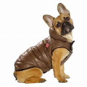 Video Pour Chien : doudoune pour chien chaude comme doudoune femme homme ~ Medecine-chirurgie-esthetiques.com Avis de Voitures