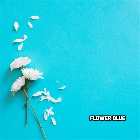 jual percantik foto produk background foto alas foto bunga