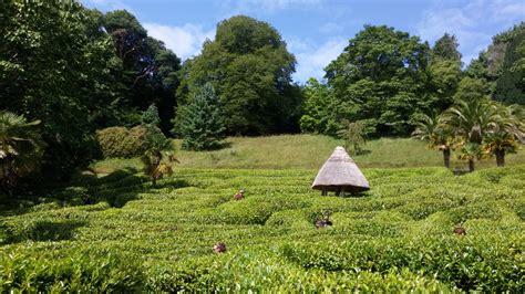 Bambus Wuchert Was Tun by Glendurgan Garden Uschis Walters Reisetagebuch
