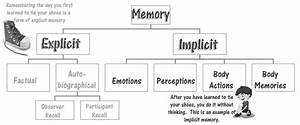 The Role Of Explicit And Implicit Memory In Relation To A Basic Task