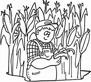 Corn Stalks Coloring Pages Field - grig3.org