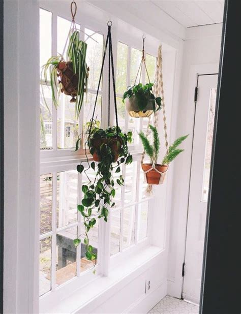 Outside Window Sill Planter by Pin By On Apartment Home In 2019