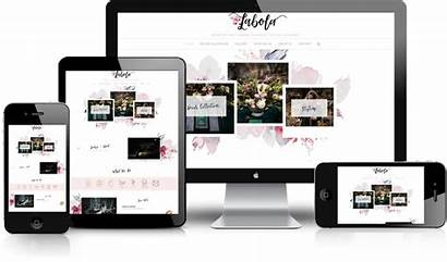 Web Designing Development Website