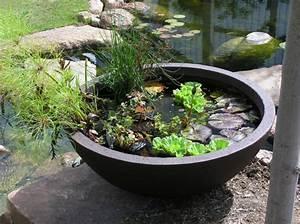 Wasserpflanzen Teich Kaufen : mini gartenteich bauen kleine oasen im garten oder auf ~ Michelbontemps.com Haus und Dekorationen