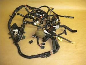 Suzuki Gsxr Wiring Harness