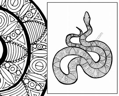 Snake Coloring Animal Zentangle Sheet Pdf Colouring
