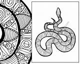 Snake Coloring Animal Zentangle Sheet Pdf Colouring Adult Sketch Intricate Description sketch template