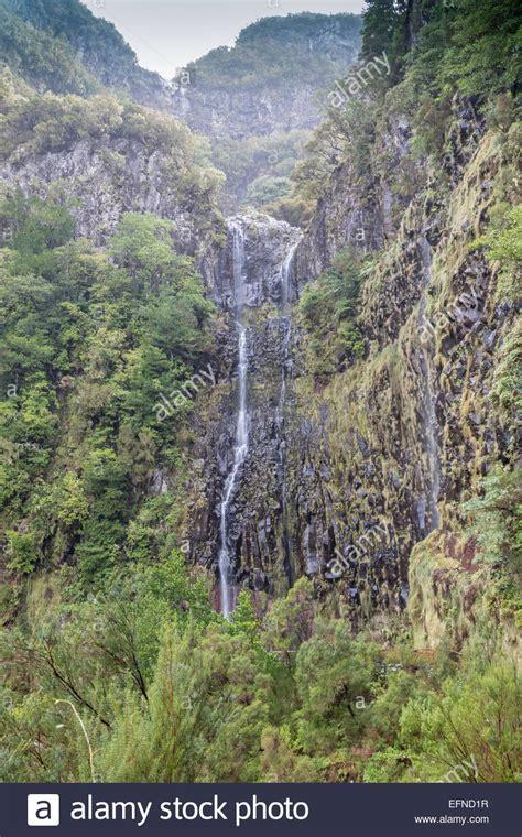 trail at levada do rei through an ancient madeira levada waterfall stock photos madeira levada