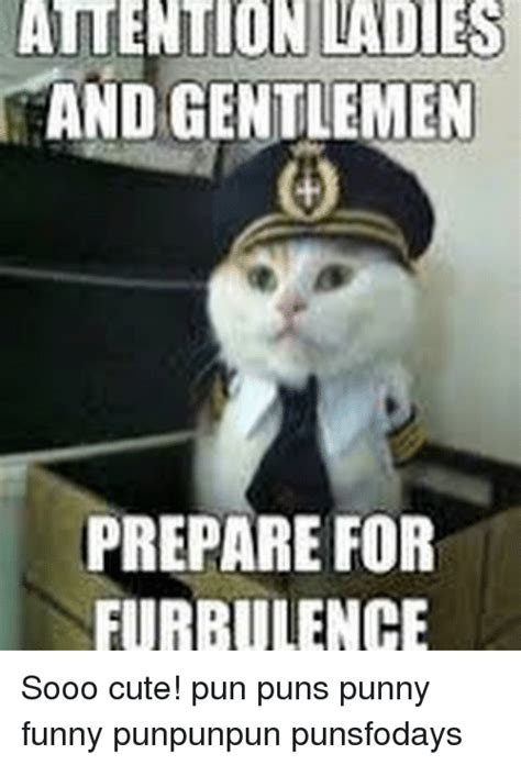 Meme Pun - atention ladies and gentlemen prepare for furbulence sooo cute pun puns punny funny punpunpun