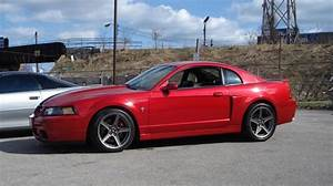 2002 Ford Mustang GT Cobra Clone supercharged - GTcarz - Automotive forums for cars & trucks.