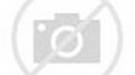 Watch The Inauguration of Joseph R. Biden, Jr. Episode ...