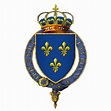 Gartered arms of Henry II, King of France | Blason ...