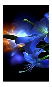 Abstract Flower 3D | Desire Love, abstract, beauty, caring ...